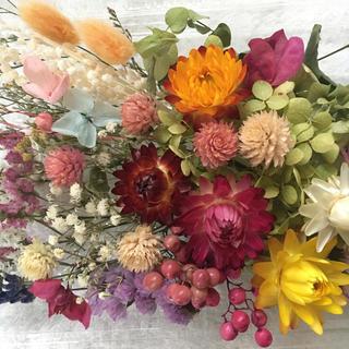 花材 詰め合わせ ドライフラワー