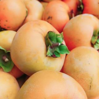 完全無農薬 柿 6個~ 格安(フルーツ)