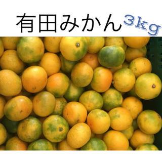 有田みかん 3kg