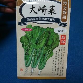 種 野菜(野菜)