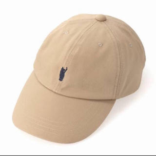 IENA - YOUNG & OLSEN🧢JIMMY THE CAT CHINO CAP