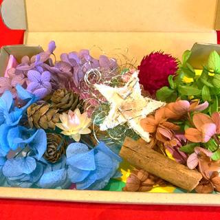 ハーバリウム★花材 おすそわけセット プリザーブドフラワー 全10種類のお花⑹(プリザーブドフラワー)