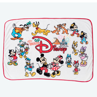 ディズニー(Disney)の専用(毛布)