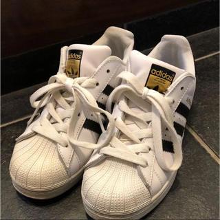 adidas - adidas アディダス SUPERSTAR スーパースター
