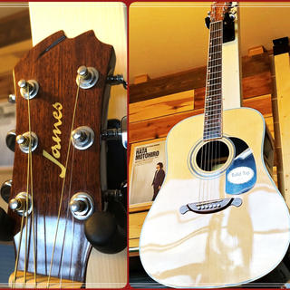 ジェームス(James)の超美品‼️Jams アコースティックギター JD350NAトップ単板 送料要相談(アコースティックギター)