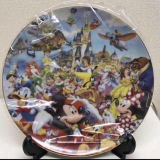 ディズニー(Disney)のディズニーランド限定絵皿☆新品未使用♡(置物)