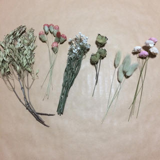 ドライフラワー 花材 詰め合わせ