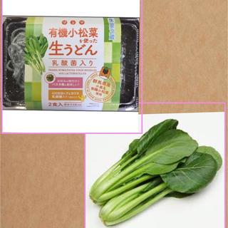 プレマ有機小松菜と乳酸菌入り小松菜生うどんセット(麺類)