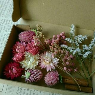 ドライフラワーの花材セット  シックピンク系7