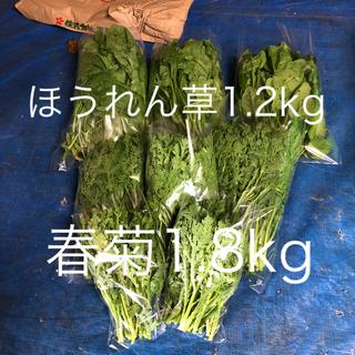 葉物野菜セット(野菜)