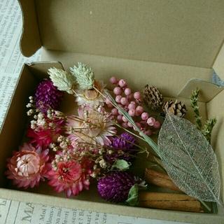 ドライフラワーの花材セット  ブライトオータム
