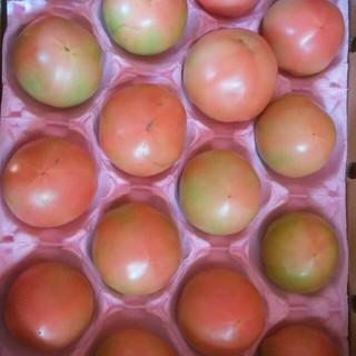 トマト 和歌山産 少しキズアリ(野菜)