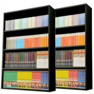 【送料無料】 本棚2個セット(組み立て式)ブラック(棚/ラック/タンス)