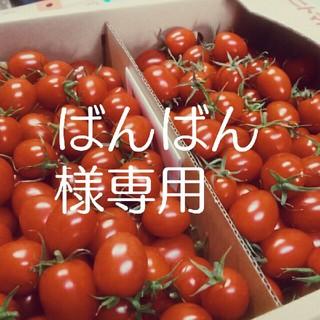 ★ばんばん様専用★ミニトマト(野菜)