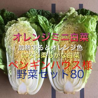 野菜セット 80 ペンギンハウス様専用(野菜)