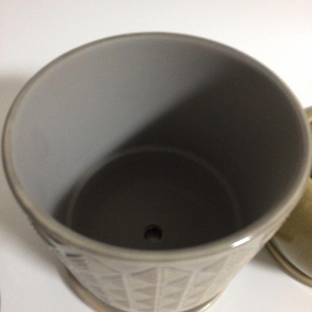 プランター 植木鉢 多肉植物 コーデックス スモーキーグレー ハンドメイドのフラワー/ガーデン(プランター)の商品写真