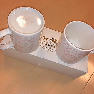 COACH - COACHマグカップ
