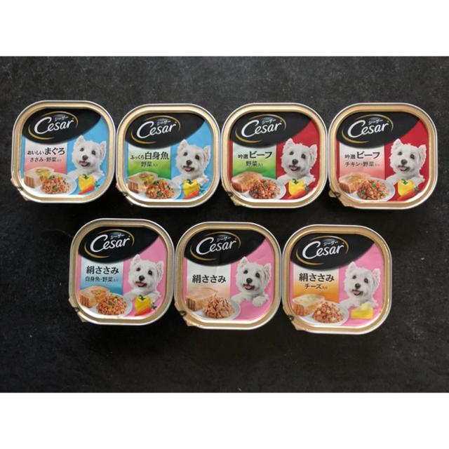 CASAR(シーザー)の犬用ペットフード シーザー その他のペット用品(犬)の商品写真