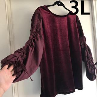 アベイル(Avail)の新品タグ付き3Lベロア袖編み上げトップス(カットソー(長袖/七分))