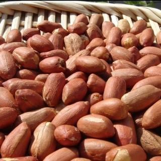 ◆新豆 千葉県八街産落花生2㌔◇最高品種 千葉半立 八街ピーナッツ(野菜)
