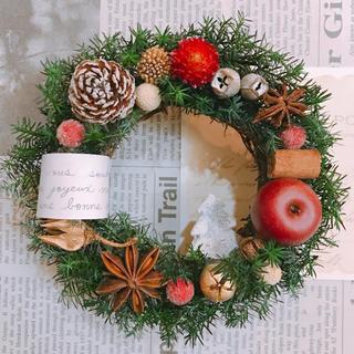 クリスマスリース、カントリー雑貨、壁掛けインテリア、ドライフラワーリース、花(リース)