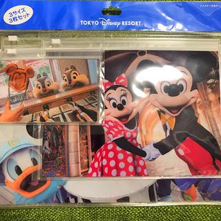 Disney - ディズニー ミッキー 実写