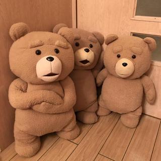 TEDぬいぐるみセット