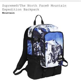 シュプリーム(Supreme)のsupreme the north face backpack リュック(バッグパック/リュック)