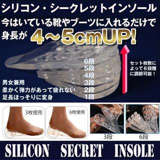 シリコンシークレットインソール 男女兼用フリーサイズ 10枚(片足5枚)入り  (その他)