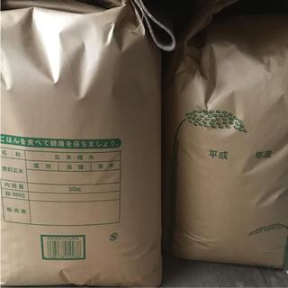 新米 長崎県産 ヒノヒカリ  25kg