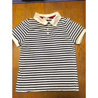 シンシア(cynthia)のレディース ボーダーポロシャツ Tシャツ(ポロシャツ)