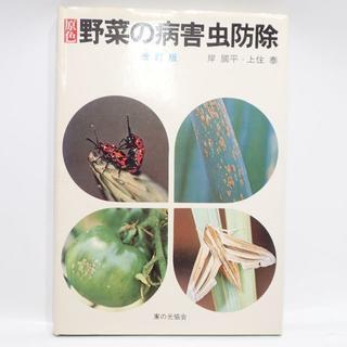 C715 カラー版 野菜の病害虫防除 岸國平 上住泰(住まい/暮らし/子育て)