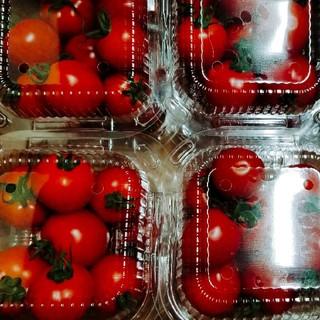 《a♡mam様専用》訳ありキュウリ・フルーツトマトset(野菜)