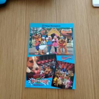 ディズニー(Disney)のディズニーランド アンケート回答 ポストカード(その他)