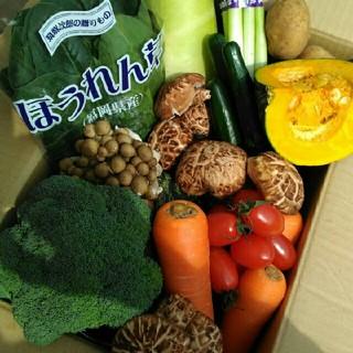 新鮮野菜7種類と旬の果物1種類(おまけつき)詰め合わせセット☆