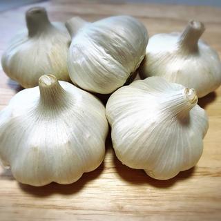 専用 15キロ(野菜)