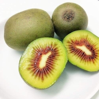 キウイフルーツ【レッドキウイ】S~Mサイズ混合 約1キロ(フルーツ)