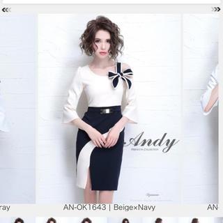 アンディ(Andy)のAndy ドレス 美品 (ミニドレス)