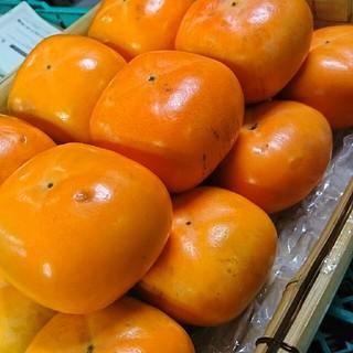 和歌山産平田種なし柿5キロ