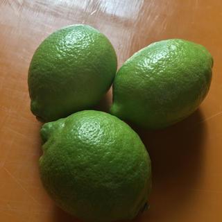 今限定!広島県産グリーンレモン3キロ 送料無料 低農薬 防腐剤無し(フルーツ)