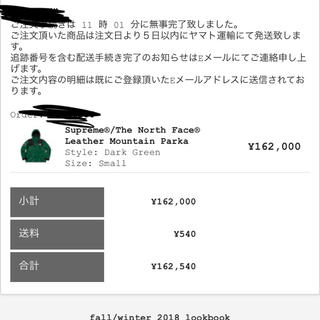 シュプリーム(Supreme)のsupreme the north face マウンテンパーカー green s(マウンテンパーカー)