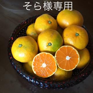 そら様専用  減農薬 佐賀県産 極早生みかん 規格外10Kg(フルーツ)