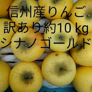 千曲農園 訳ありシナノゴールド 約10 kg 信州産リンゴ(フルーツ)