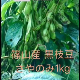 篠山産 黒枝豆 1キロ(野菜)