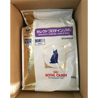 ROYAL CANIN - ロイヤルカナン低分子プロテイン猫ドライフード4キロ