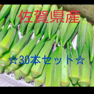 【今だけ期間限定値下げ!!】佐賀県産オクラ30本セット(野菜)