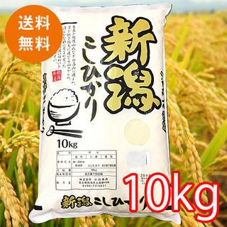 送料無料!【精米】新潟県産 コシヒカリ こしひかり 10kg