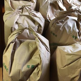 ジンゴ様専用(米/穀物)