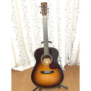 Morris アコースティックギター MF-256TS