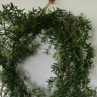 ローズマリーの天然虫除け壁掛け(アロマ/キャンドル)